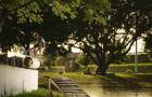 Pushin' | Dylan Miller