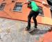 Jart Skateboards   The AM Project Carlos Neira