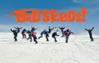 The Bad Seeds  – Online da Lunedì 27 Ottobre