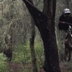 Brandon Semenuk Hits a Flowy Slopestyle Trail in the Woods Raw 100