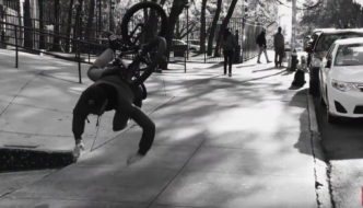 ANIMAL BIKES: FACTS – MATT MILLER