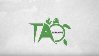 Daniel Grant – TAO Grom Sessions