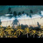 FILIPE TOLEDO - THE ISLAND