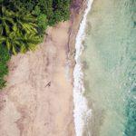 ROXY presenta la collezione Jungle Paradise
