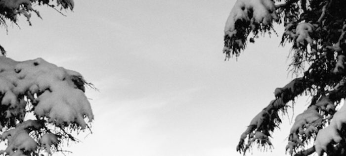 CONTRADDICTION – by Elias Elhardt – Teaser 1